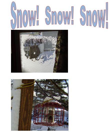 snow-news-snip