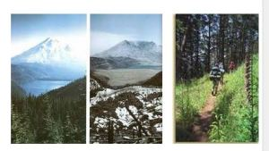 Before, After, and Later on at Mt. St. Helens